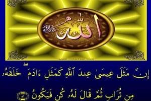 ali-imran59