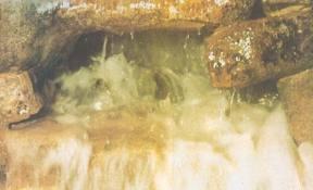 Zem-zem voda